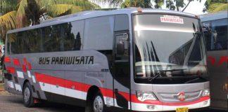 Agen Sewa Bus Pariwisata Akas 4 Probolinggo