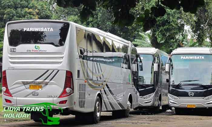 Daftar Harga Sewa Bus Pariwisata di Depok Terbaru Terbaik murah