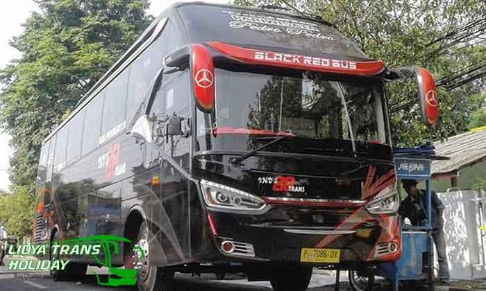 Sewa Bus Pariwisata di Lumajang Terbaru Murah Terbaik