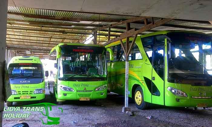 Daftar Harga Sewa Bus Pariwisata di Malang Murah Terbaru Terbaik
