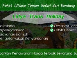 Paket Wisata Taman Safari dari Bandung Murah Fasilitas Terbaik