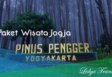 Paket WIsata Jogja 1 hari Pinus Pengger
